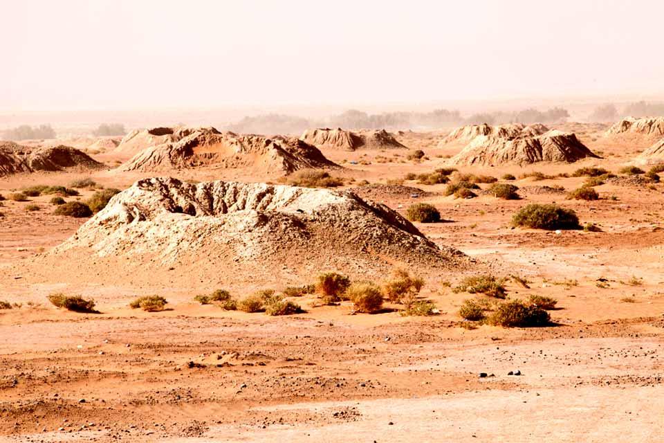 landscape_36